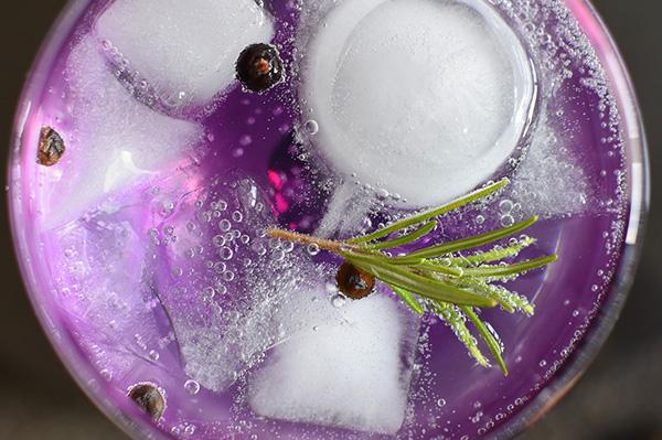 gin tonic bacche di ginepro